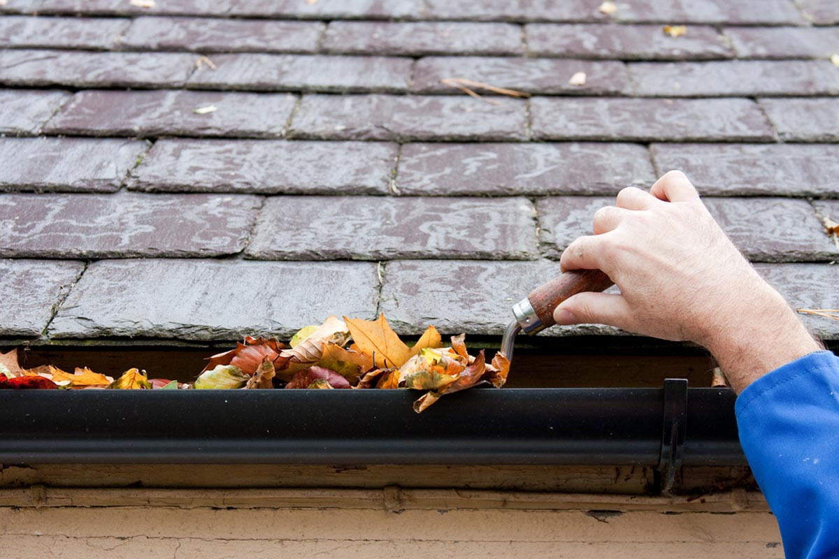 2020 Gutter Cleaning Cost How Much To Clean Gutters Homeguide