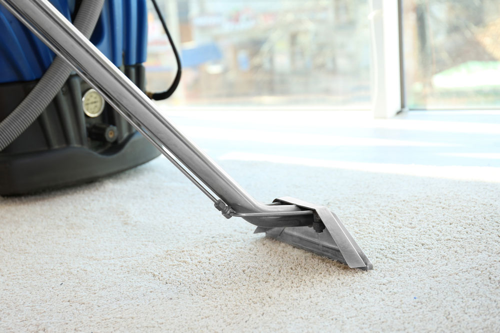 2020 Carpet Cleaning Prices Average