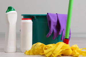 Find Trusted Painters Plumbers Maids And More Homeguide