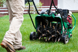 Lawn Care Amp Landscaping Homeguide