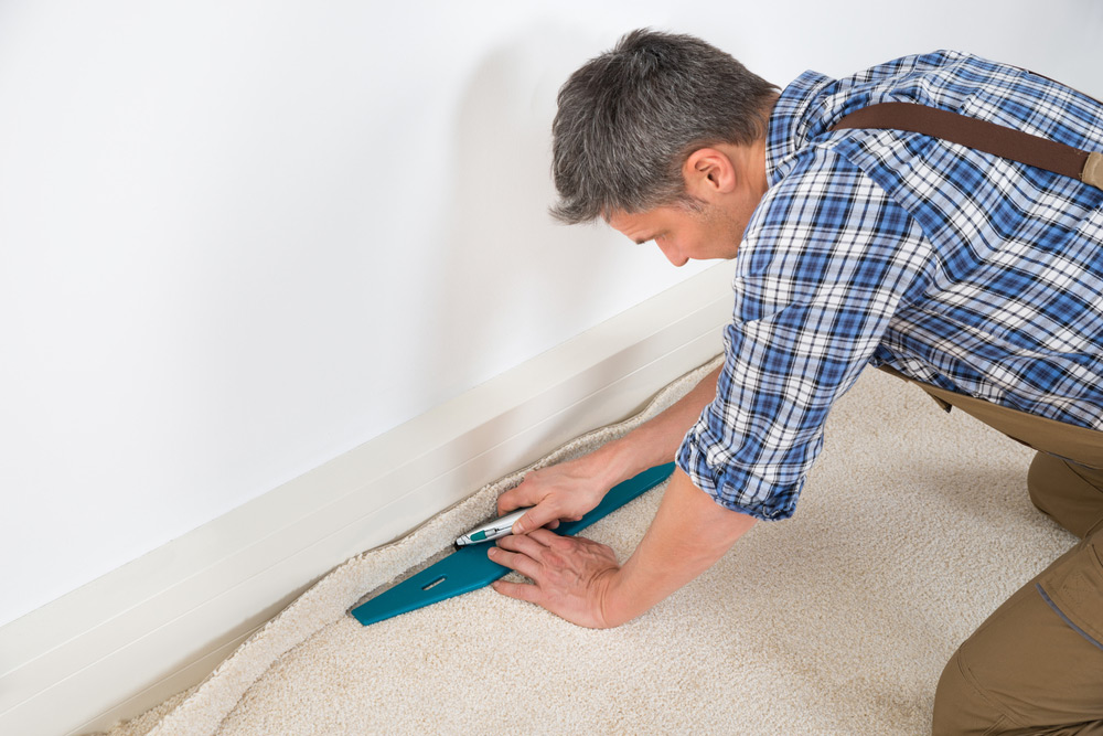 2019 Carpet Installation Amp Replacement Cost Guide Per