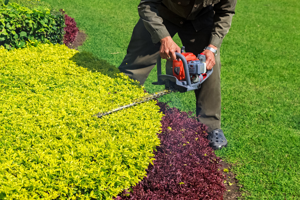 gardener 1 - How Much Should A Self Employed Gardener Charge 2019