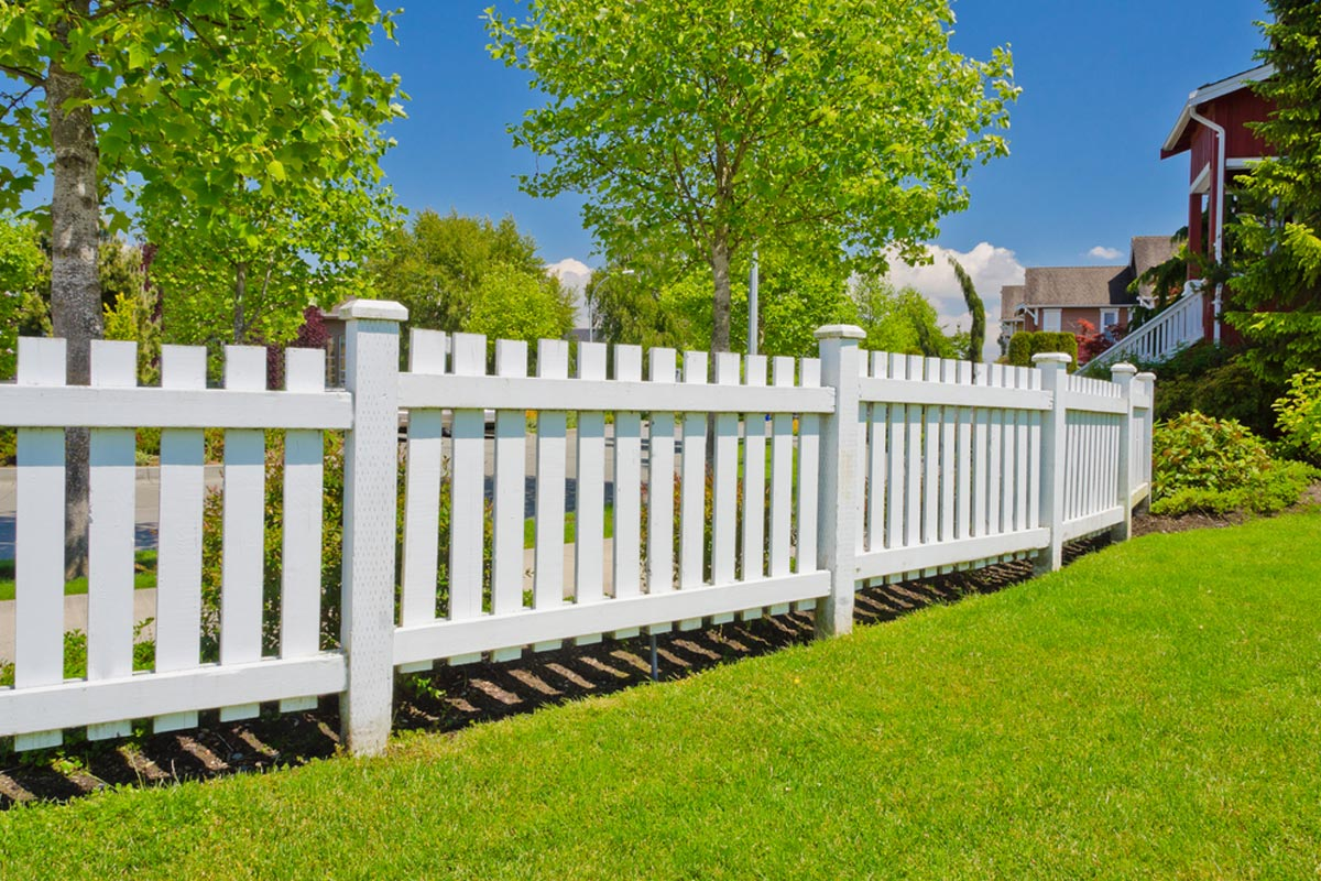 4 Foot Tall White Picket Wood Fence In Backyard