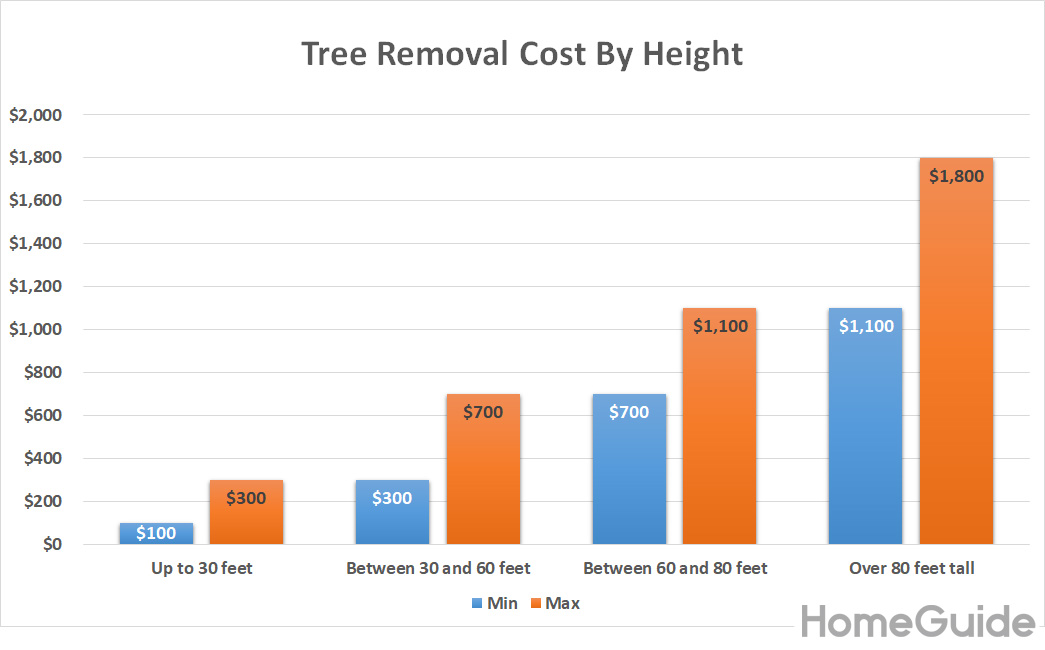 2019 Tree Removal Costs Prices To Cut Down A By Size