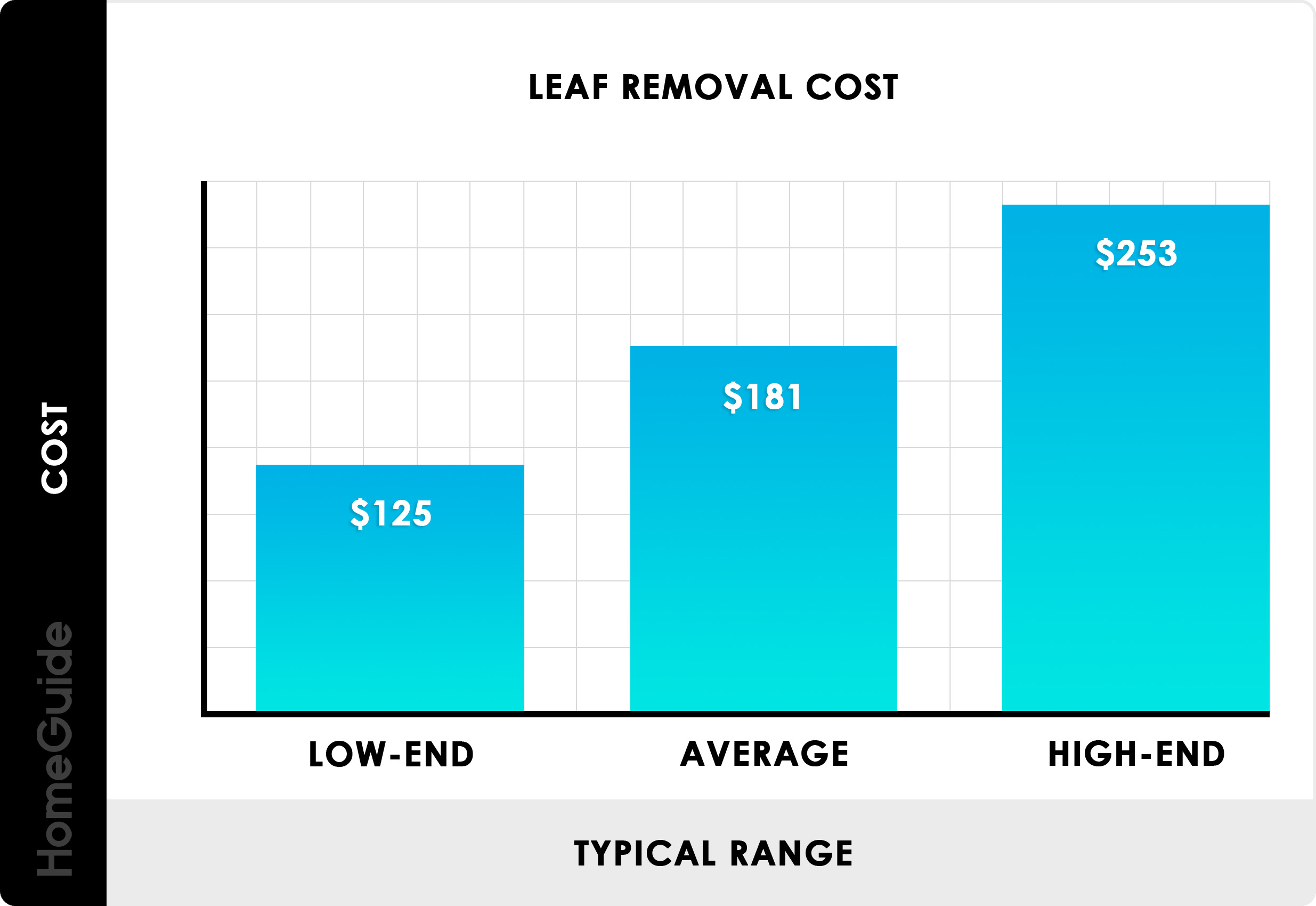 2020 Leaf Removal Costs Yard Clean Up