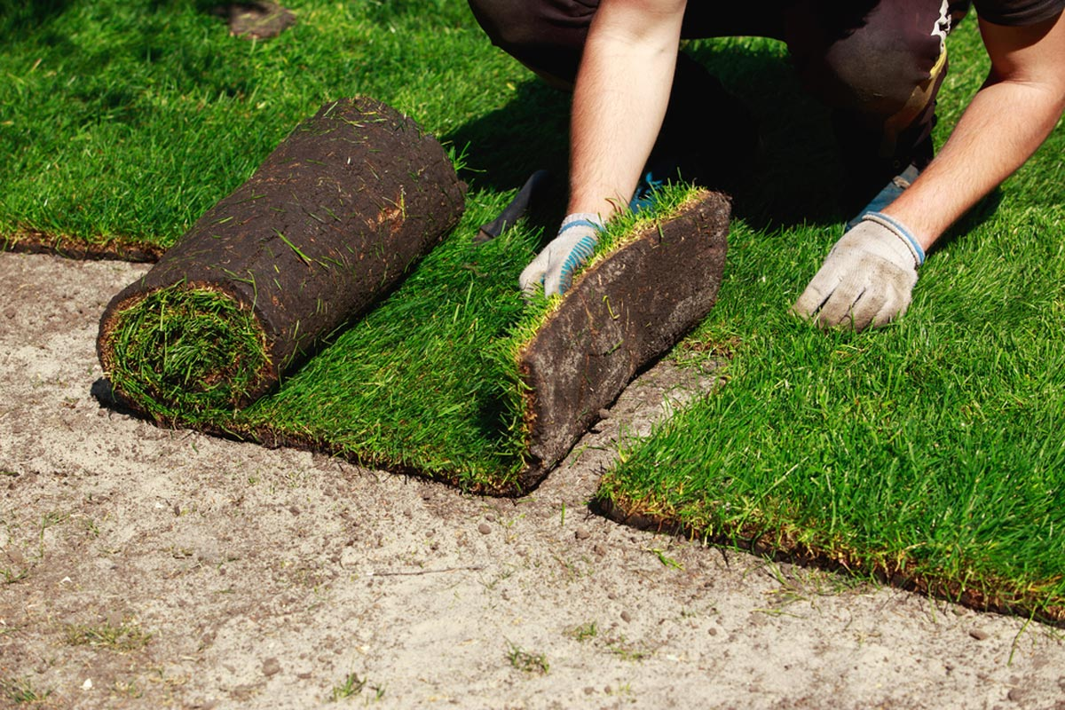 Prices To Lay Sod Per Square Foot