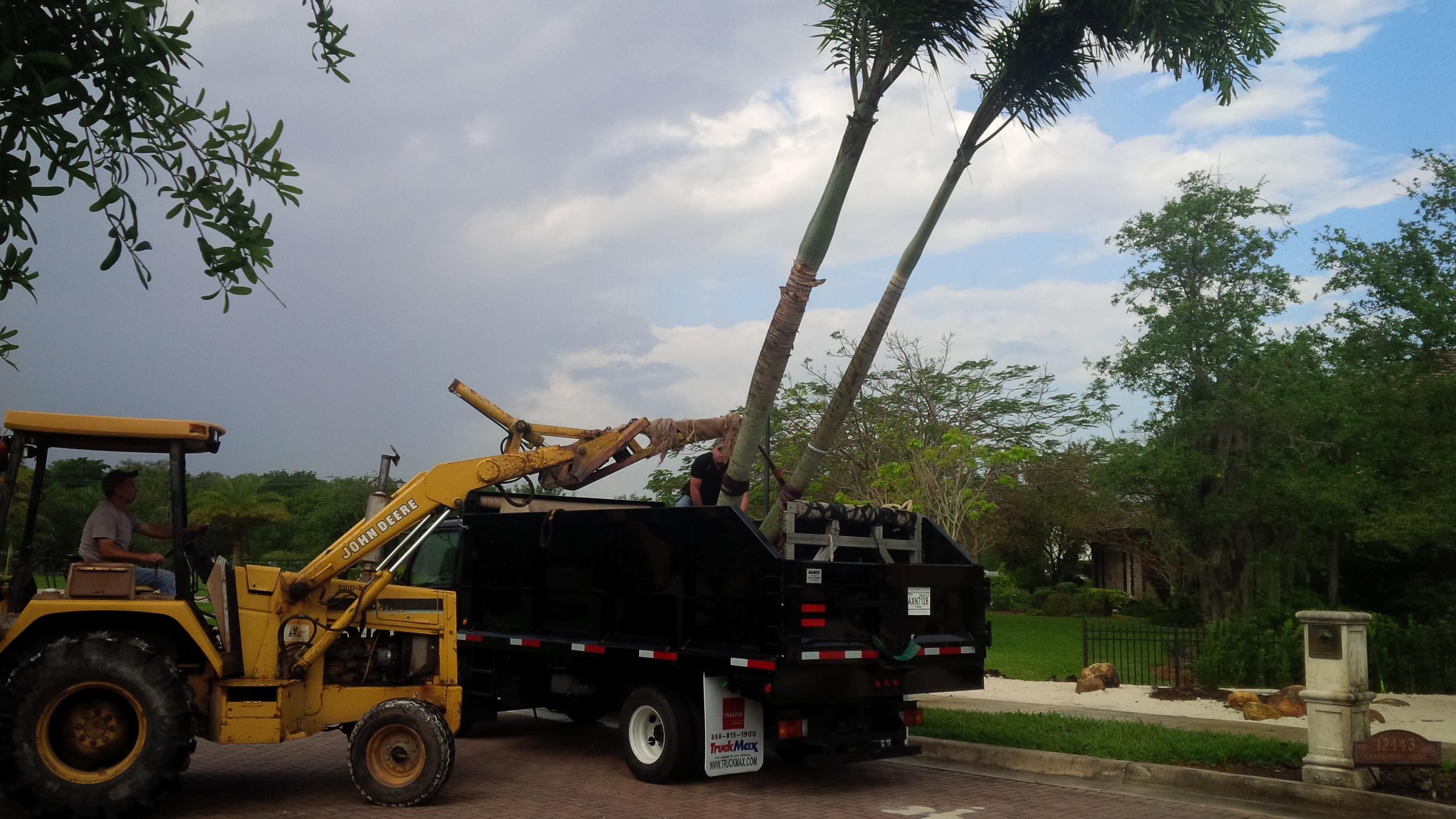 Green Land Design Inc In Fort Lauderdale Fl Homeguide