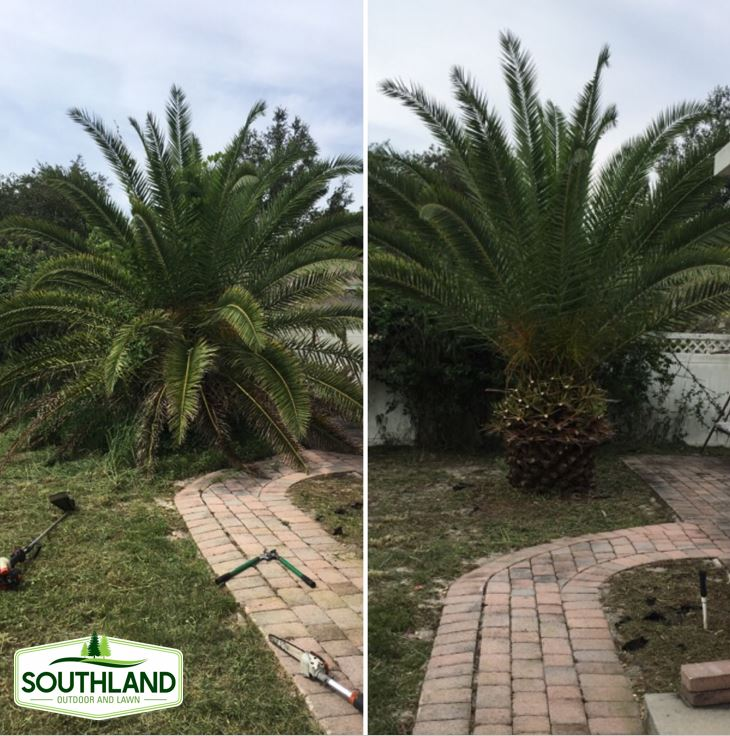 Southland Outdoor And Lawn In Apopka Fl Homeguide