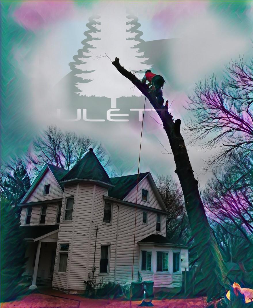Ulett Tree Amp Landscaping Llc In University City Mo