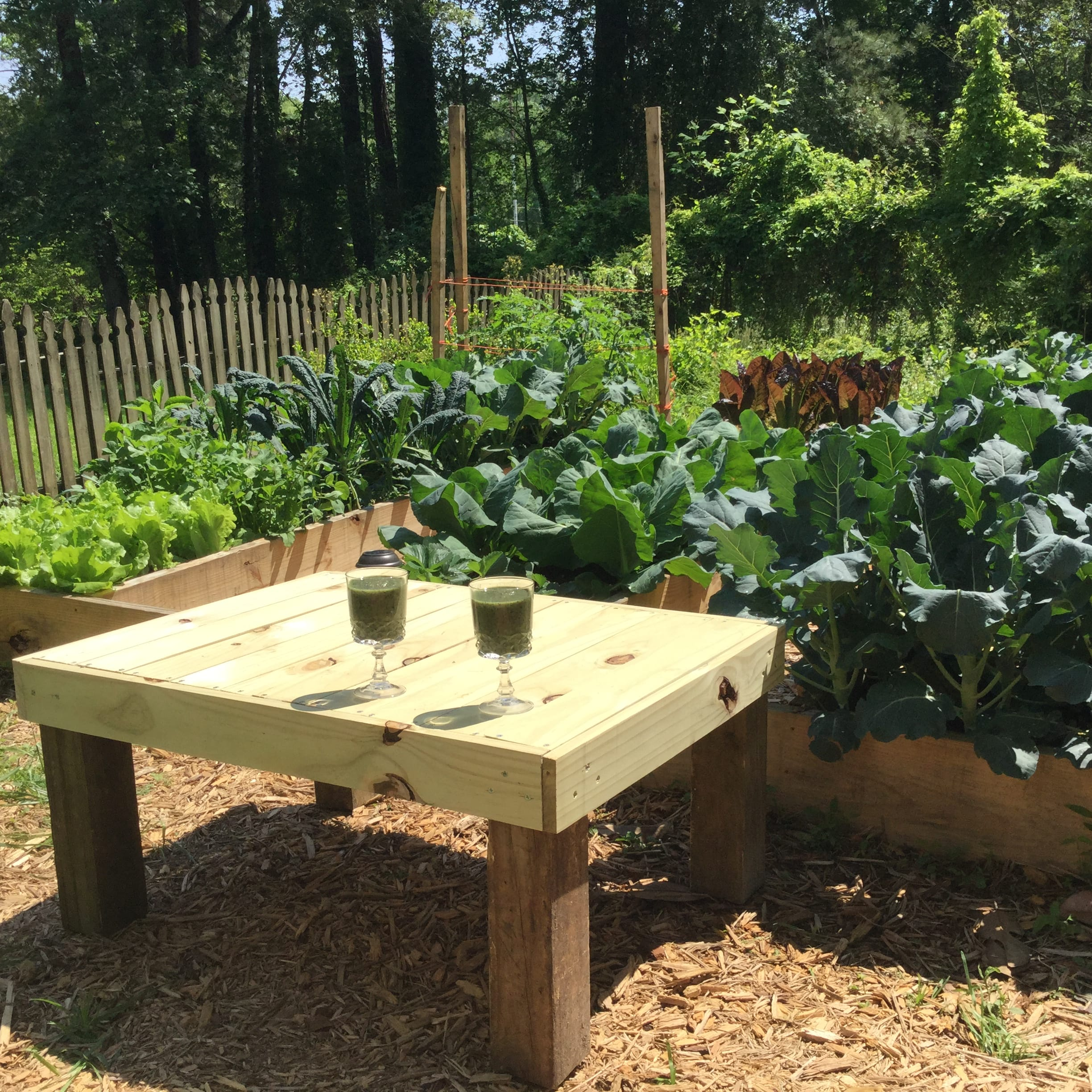 Grow It Yourself In Durham Nc Homeguide