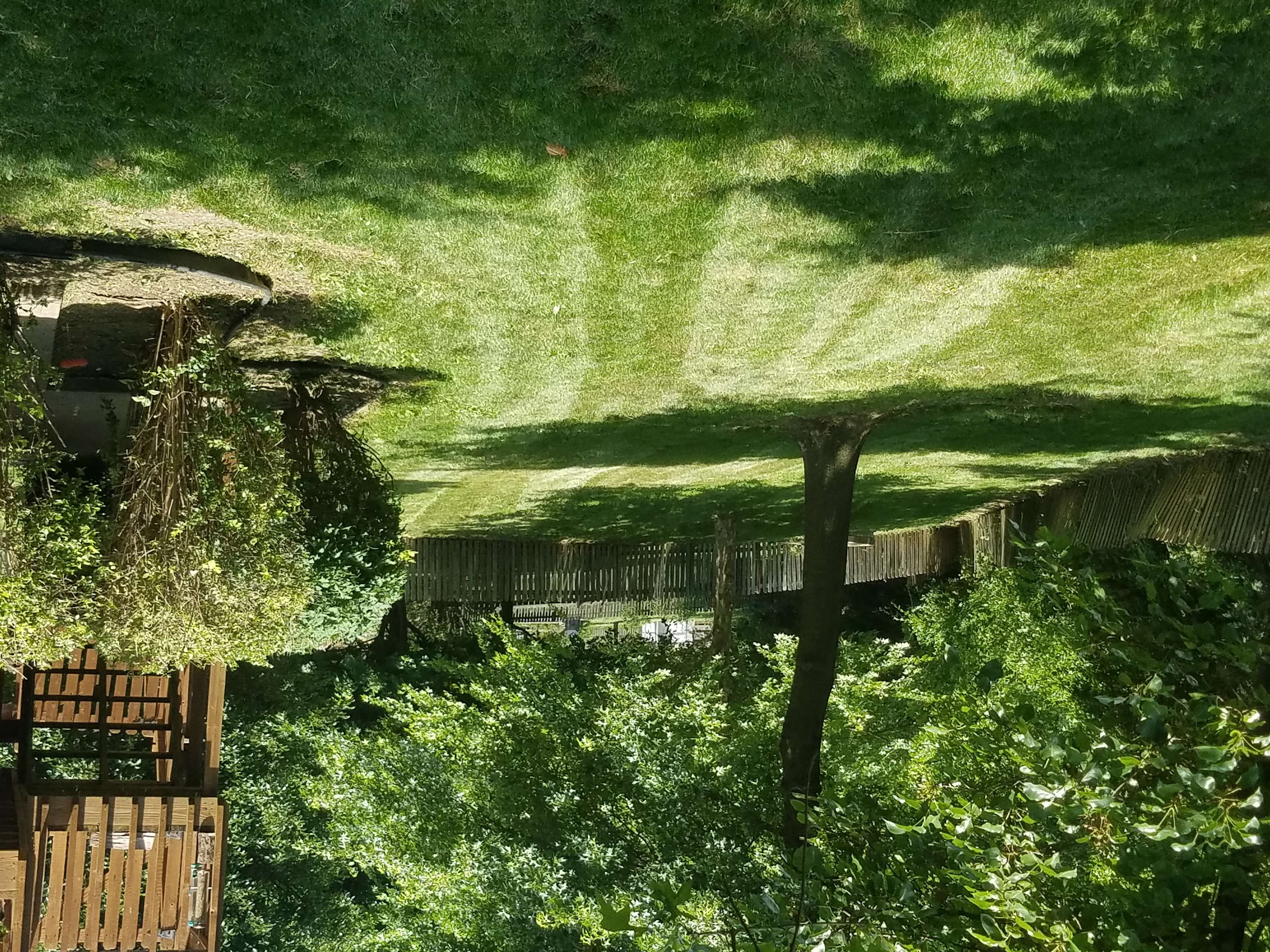 Goulden Tree Lawn Care In Lee S Summit Mo Homeguide