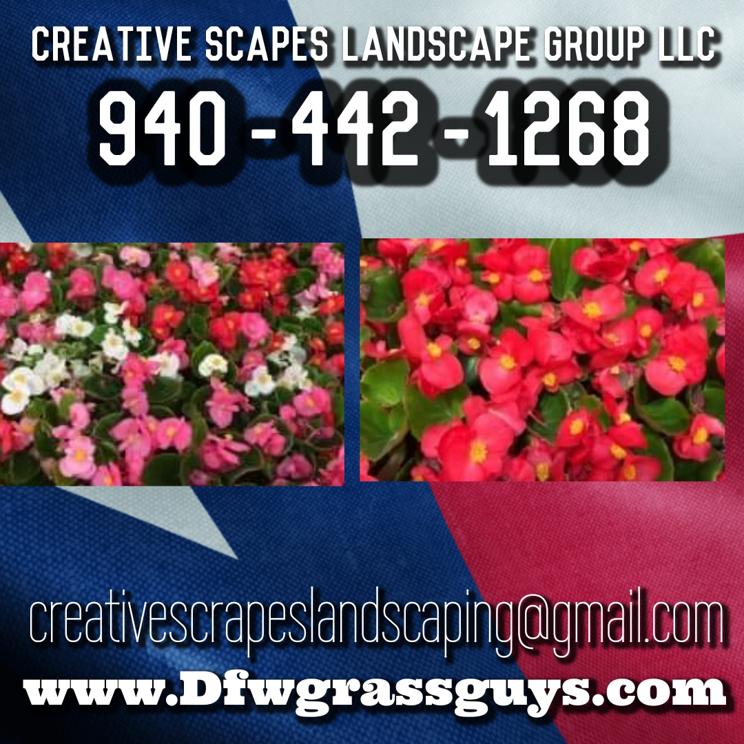 Creative Scrapes Landscape Amp Water Feature S In Denton Tx