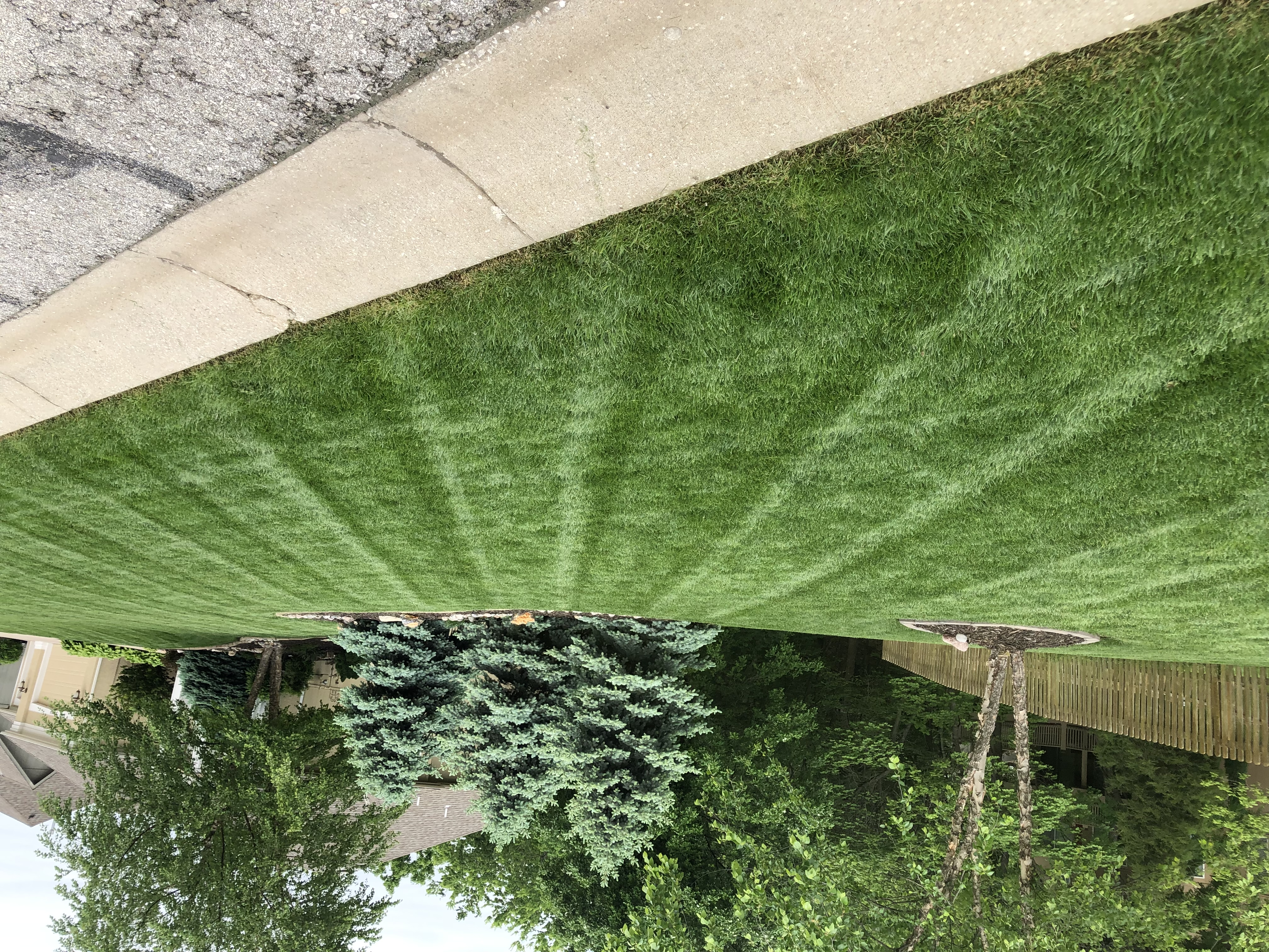 Powell S Lawn Care Amp Landscaping In Independence Mo
