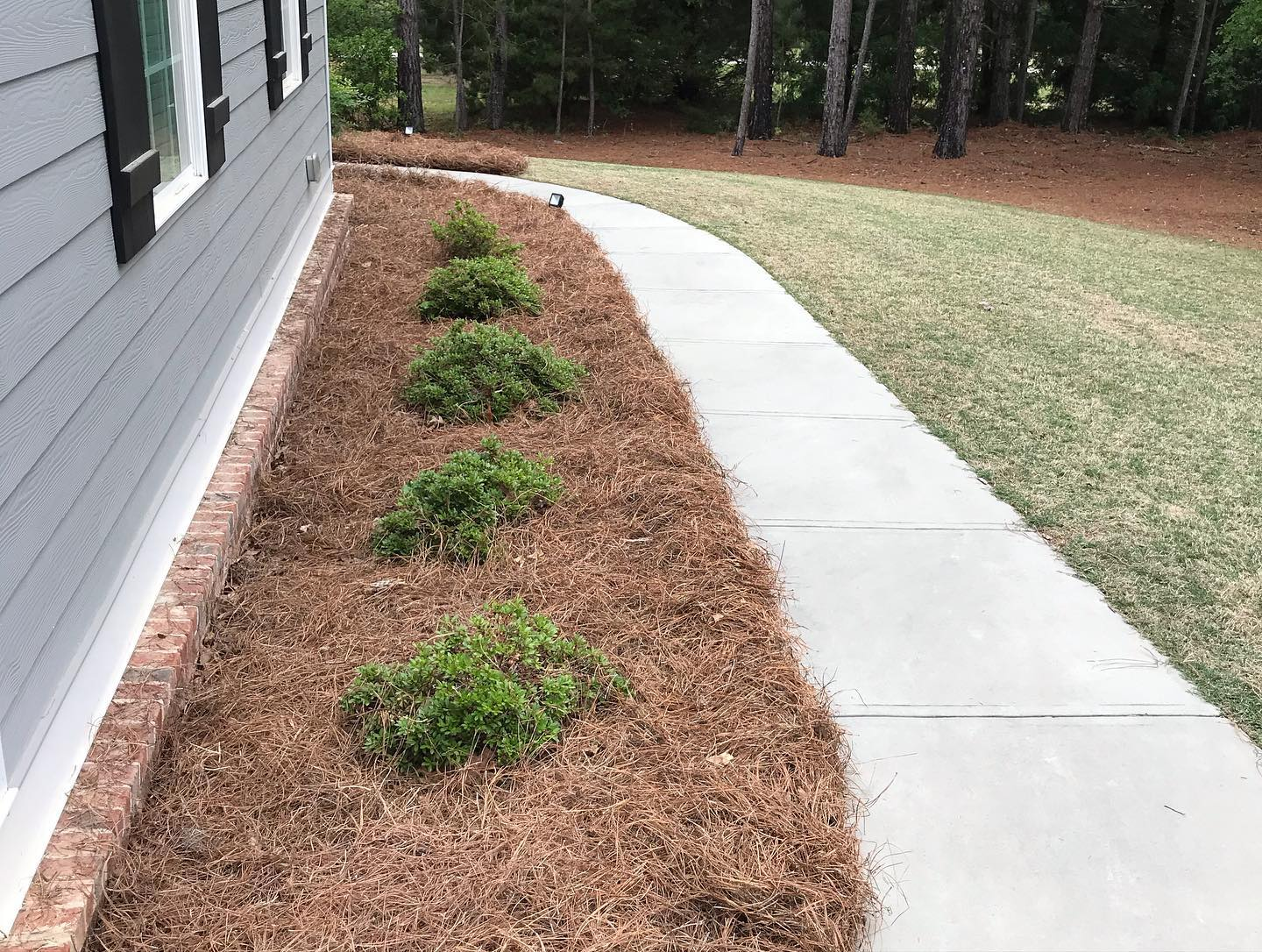 Unity Sod Amp Landscaping In Johns Creek Ga Homeguide