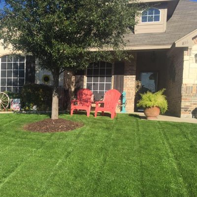 The 10 Best Landscaping Companies In Fort Worth Tx With