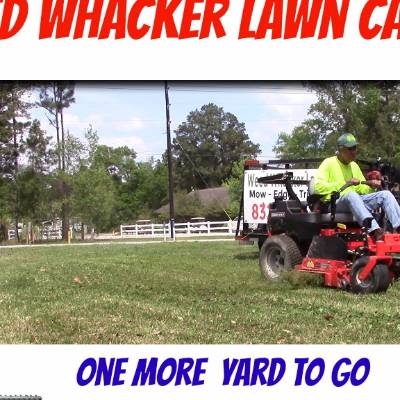 Weed Whacker Lawn Care