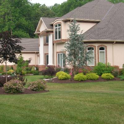 the 10 best landscaping companies in san antonio tx with free quotes