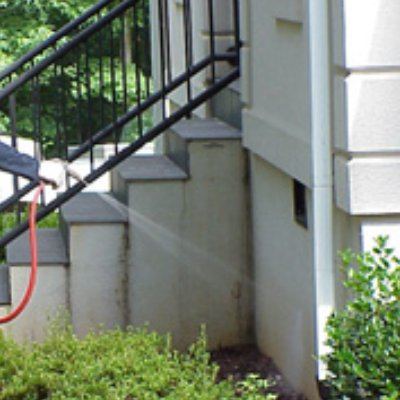 Parker Pest Control In Raleigh Nc Homeguide