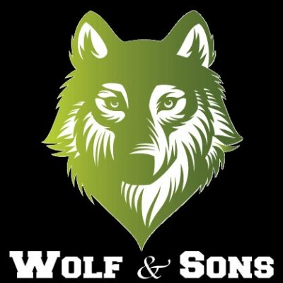 Wolf And Sons Lawn And Landscaping Services Llc