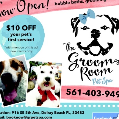 The Groom Room Pet Spa And Day Care in Delray Beach, FL // HomeGuide