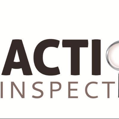 Action 1 Inspections Llc