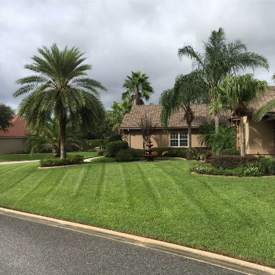 Rambo S Affordable Lawn Care Landscaping In Jacksonville Fl Homeguide