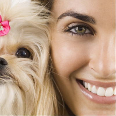 The 10 best dog groomers in huntington beach ca with free quotes seashore pet spa and grooming solutioingenieria Choice Image