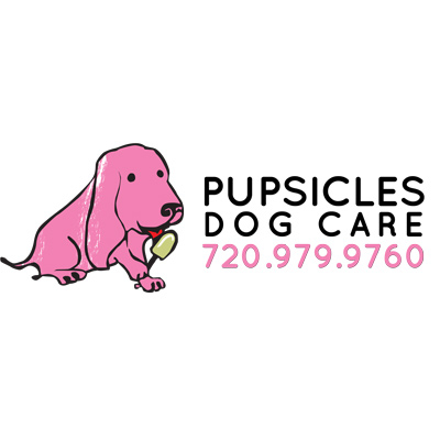 Pupsicles Dog Care In Denver Co Homeguide