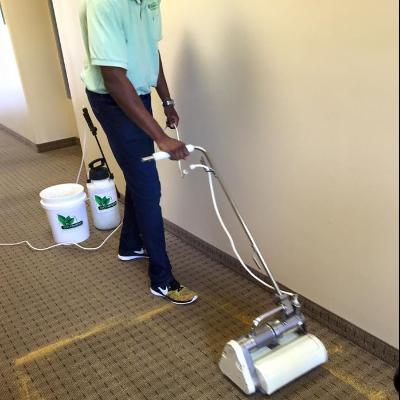 Carpet Cleaner Al Santa Clarita Carpet Vidalondon