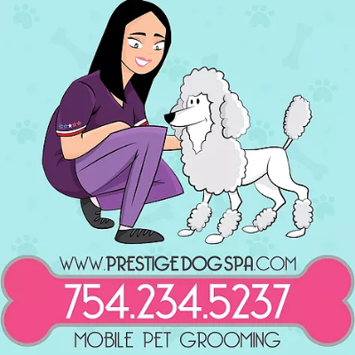 The 10 best dog groomers in pompano beach fl with free quotes prestige dog spa solutioingenieria Images