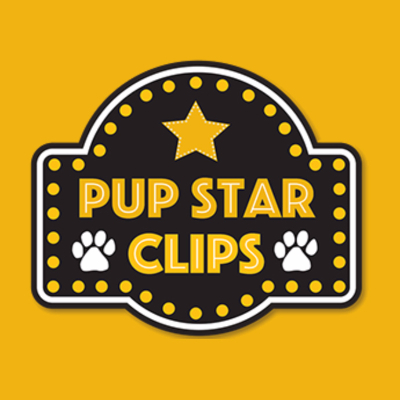 Pup Star Clips Mobile Pet Grooming In Littleton Co