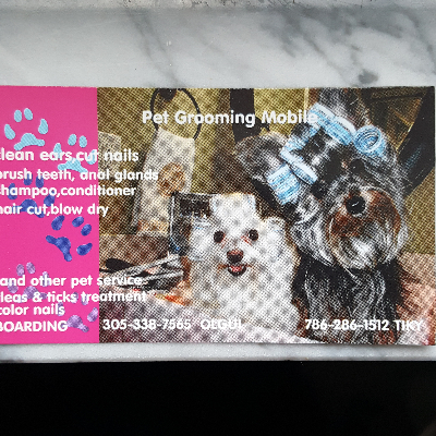 The 10 best dog groomers near me with prices reviews olgui and tiky pet grooming mobile and boarding solutioingenieria Gallery