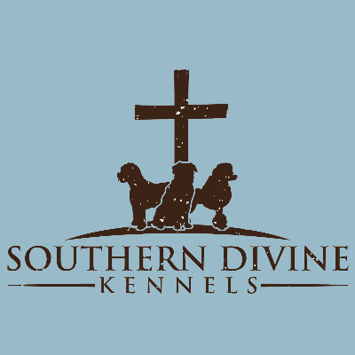 Southern Belle Pet Grooming And Spa Services in Charlotte