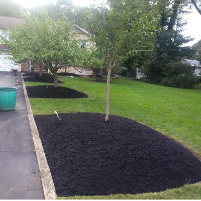 The 10 Best Leaf Removal Services In Newark Nj With Free Quotes
